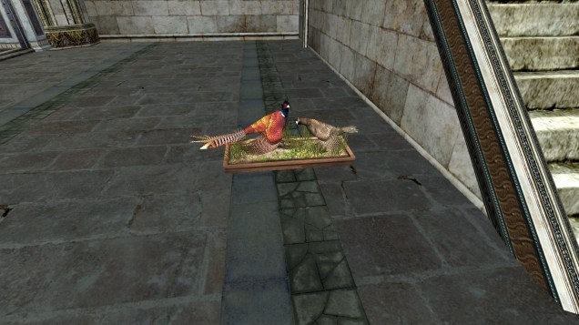 pheasant (4)
