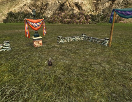 Small Hobnanigans Field with Dorking Chicken