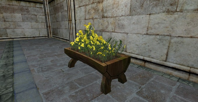Raised Planter of Rockroses