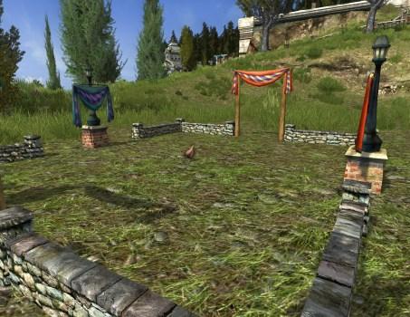 Small Hobnanigans Field with Orange Wyandotte Chicken
