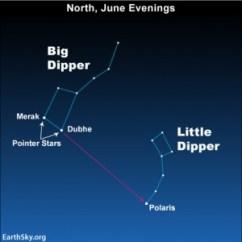Polar Bear Diagram Venn Dna And Rna Find The Little Dipper   Sky Archive Earthsky