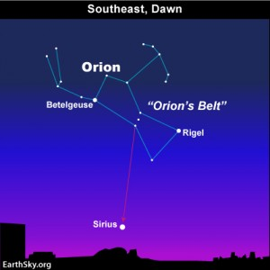 Image result for orion sirius