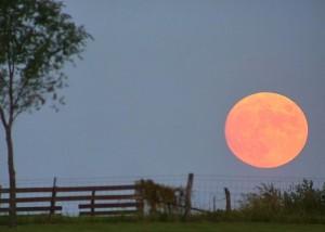 Image Credit: Dan Bush of Missouri Skies