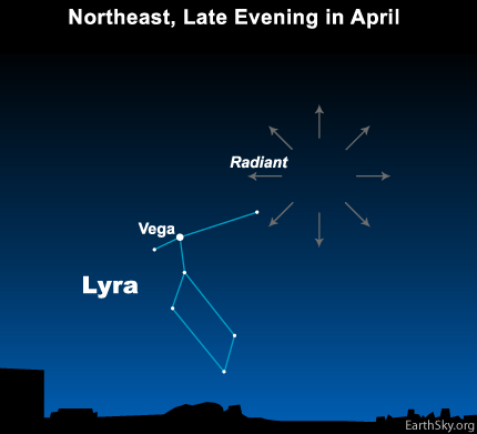 The radiant point of the Lyrid meteor shower is near the bright star Vega in the constellation Lyra the Harp.