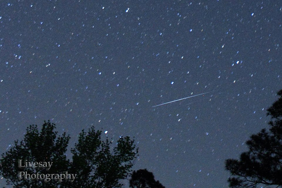 From EarthSky Facebook friend Guy Livesay. He wrote, ' Didn't see many Lyrids on the 21st or 22nd in Eastern NC. This is from the 21st. There's actually 2 in this shot very close together.'