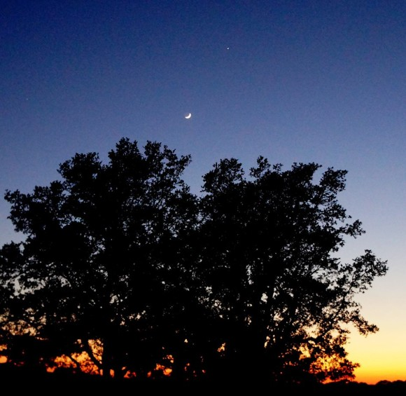 Debra Fryar in Calobreves, Texas captured this photo of the moon and Jupiter on May 31, 2014.  Jupiter was close to the twilight then.  In early July, Jupiter will be even closer to the twilight, about to disappear in the sun's glare.