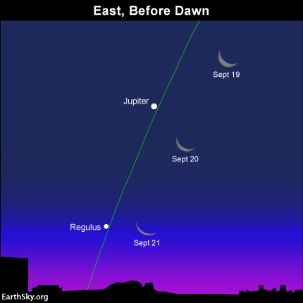 Transitions to Fall visible in the night sky