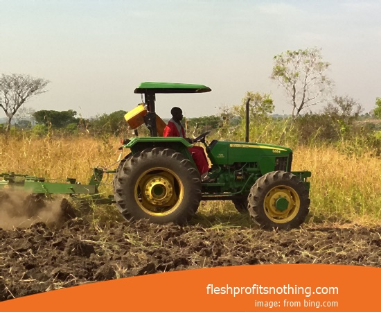 Here Are Some Advantages Of Agriculture And Plantation Business