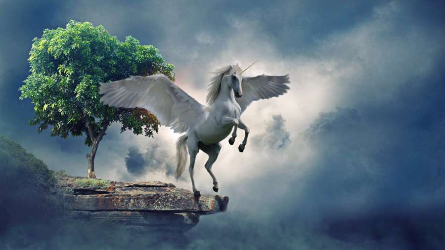 3d Animated Wallpaper For Laptop Free Download Image Of Beautiful White Unicorn 【free Photo】 100011164