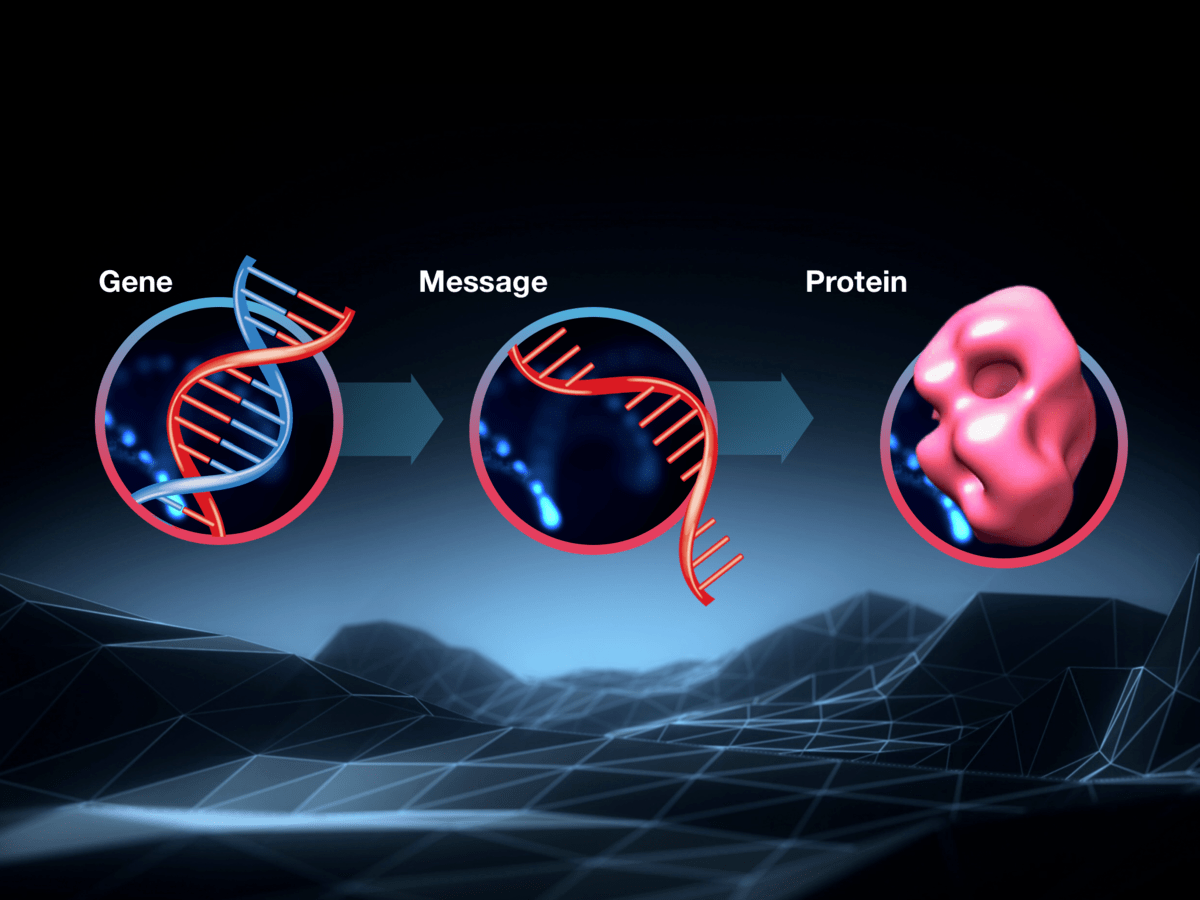 A Powerful Message Does A Toxic Rna Message Molecule