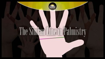 Meaning of the Simian Line in Palmistry
