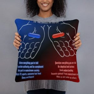 "2-Choices Pillow, 18"" x 18"