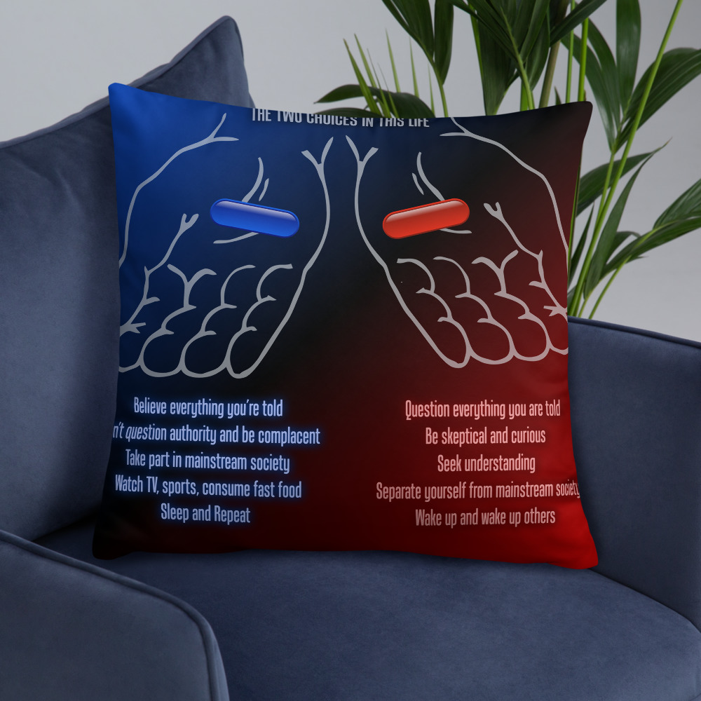 2-Choices Pillow