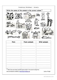 Vocabulary Worksheet