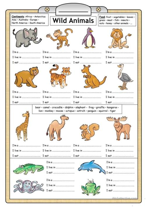 small resolution of English ESL Animals worksheets - Most downloaded (2631 Results)