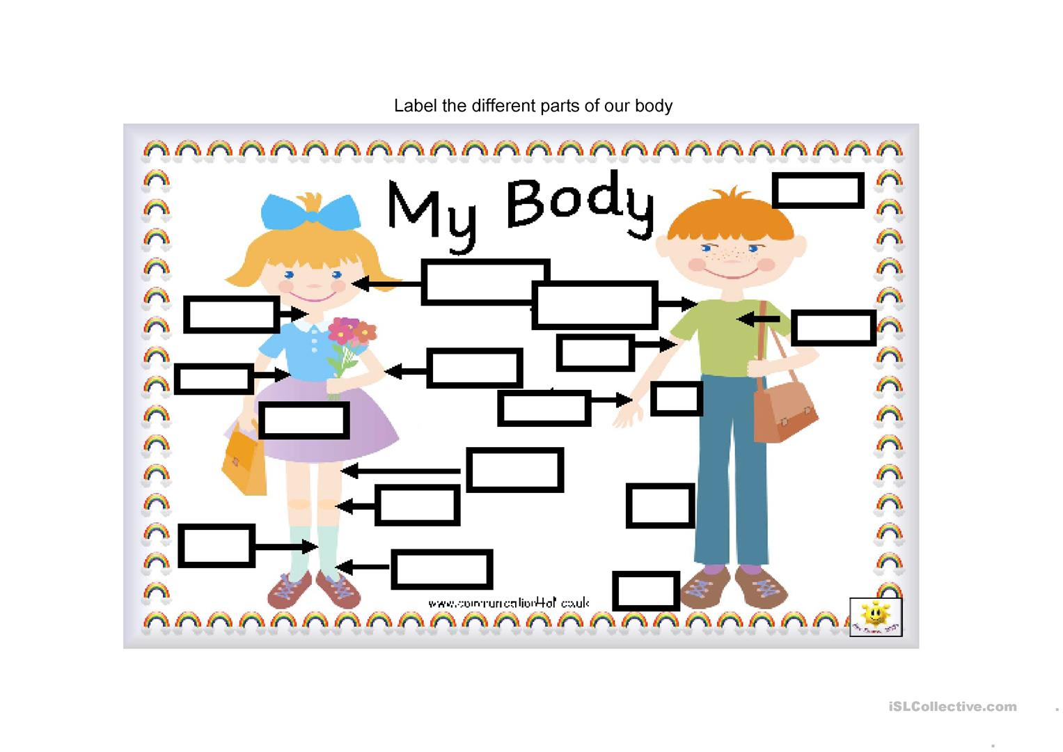 Parts Of The Body Worksheet Worksheet