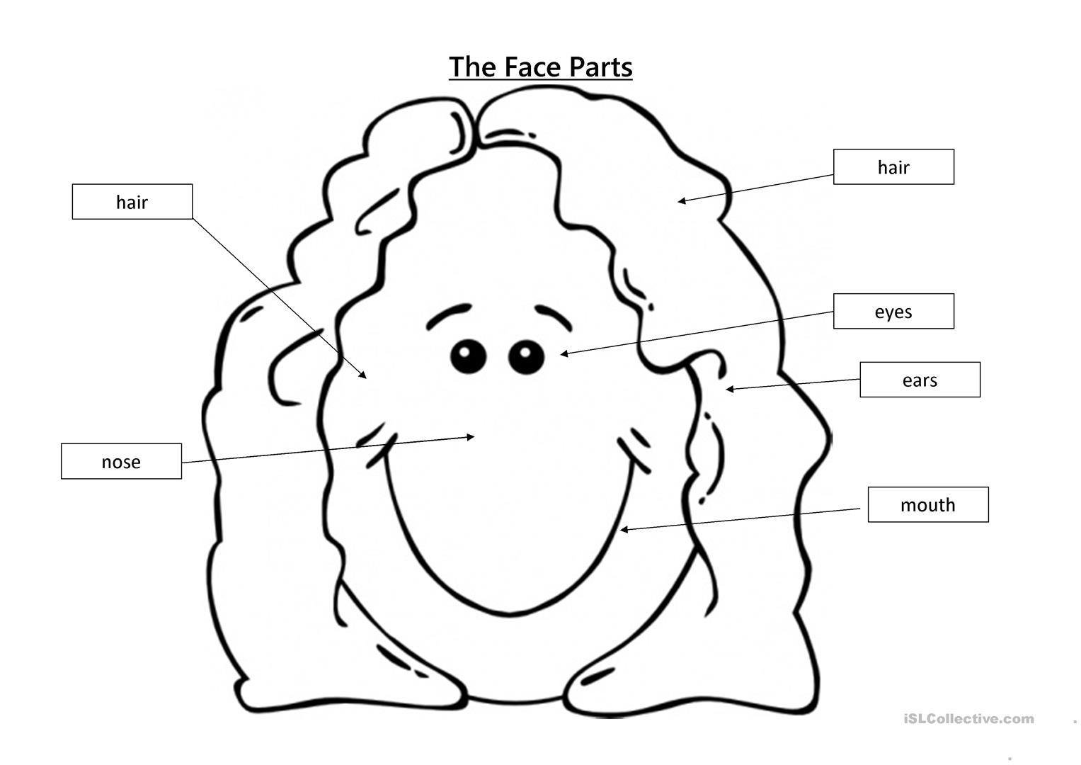 Preschool Body Parts Labeling Worksheet Printable