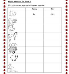 Animals And Their Babies Worksheets For Grade 1 - Baby Viewer [ 1079 x 763 Pixel ]