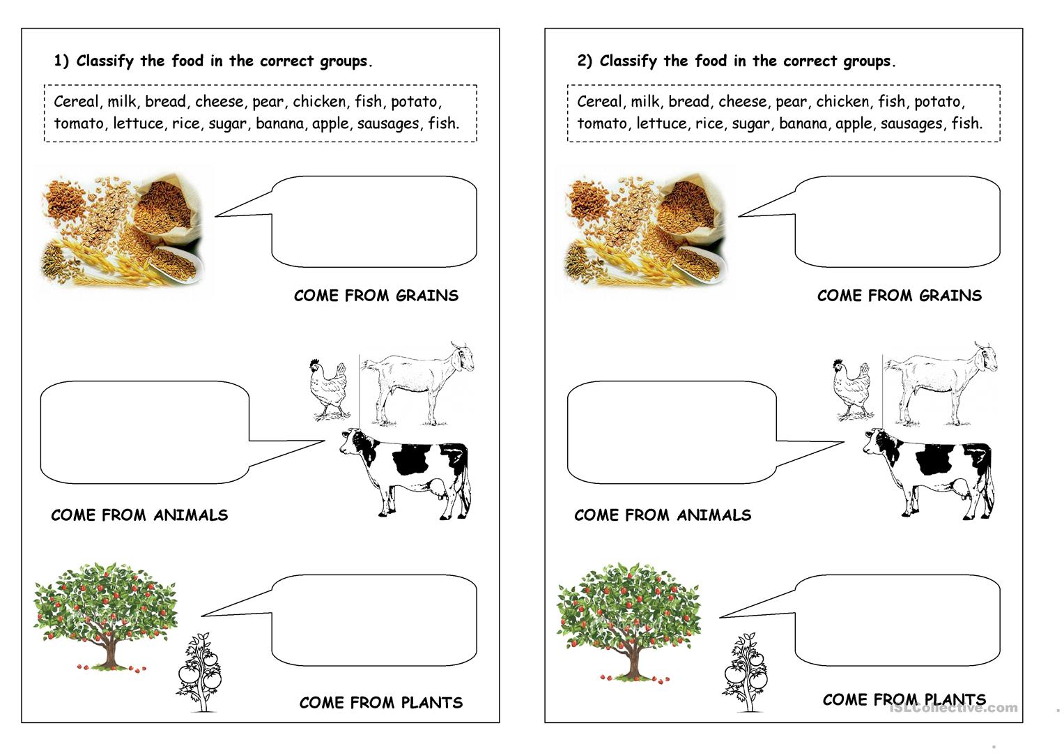 Food Classification Worksheet