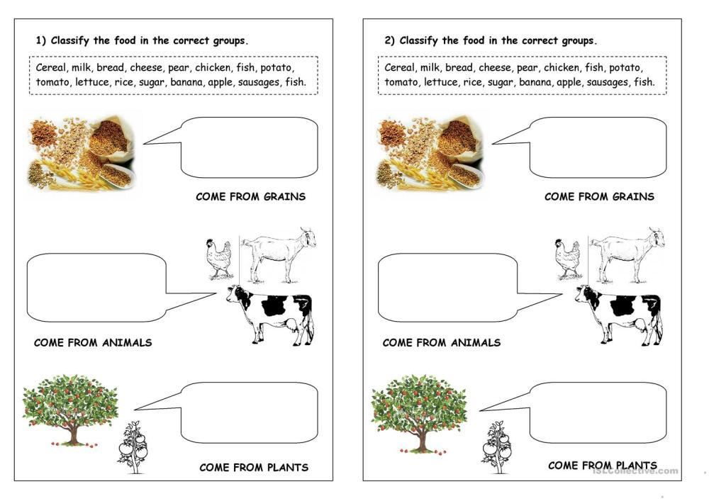 medium resolution of food classification - English ESL Worksheets for distance learning and  physical classrooms
