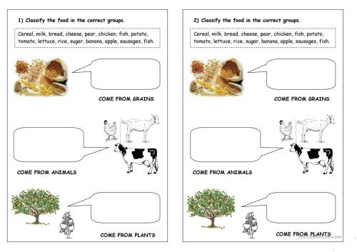 small resolution of food classification - English ESL Worksheets for distance learning and  physical classrooms