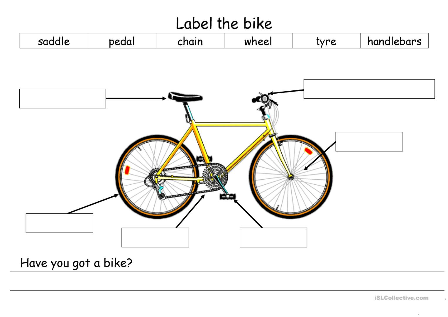 Bicycle Parts Worksheet