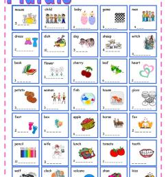 Regular and Irregular Plurals - English ESL Worksheets for distance  learning and physical classrooms [ 1079 x 763 Pixel ]