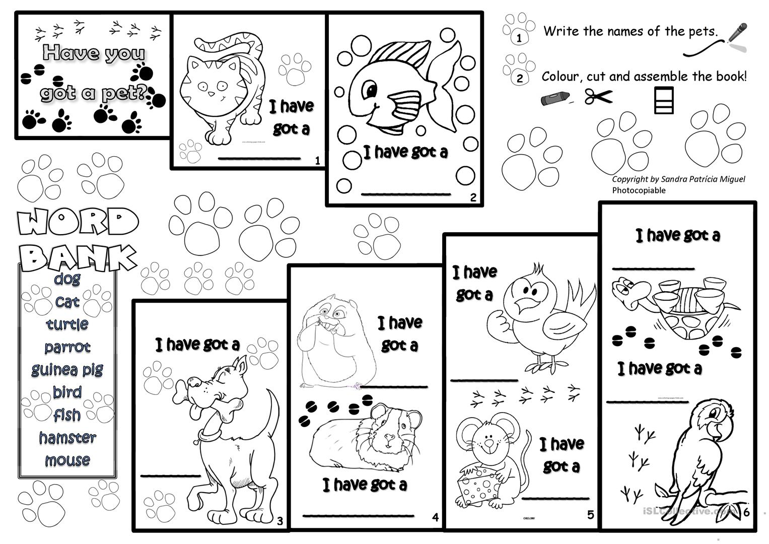 Pets Stepbook Worksheet