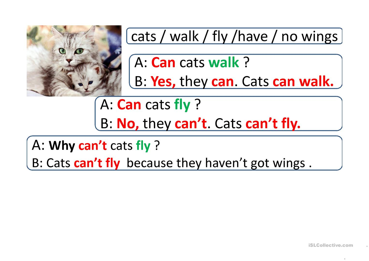 Esl Worksheet With Can And Can T
