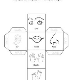 Body Parts - English ESL Worksheets for distance learning and physical  classrooms [ 1079 x 763 Pixel ]