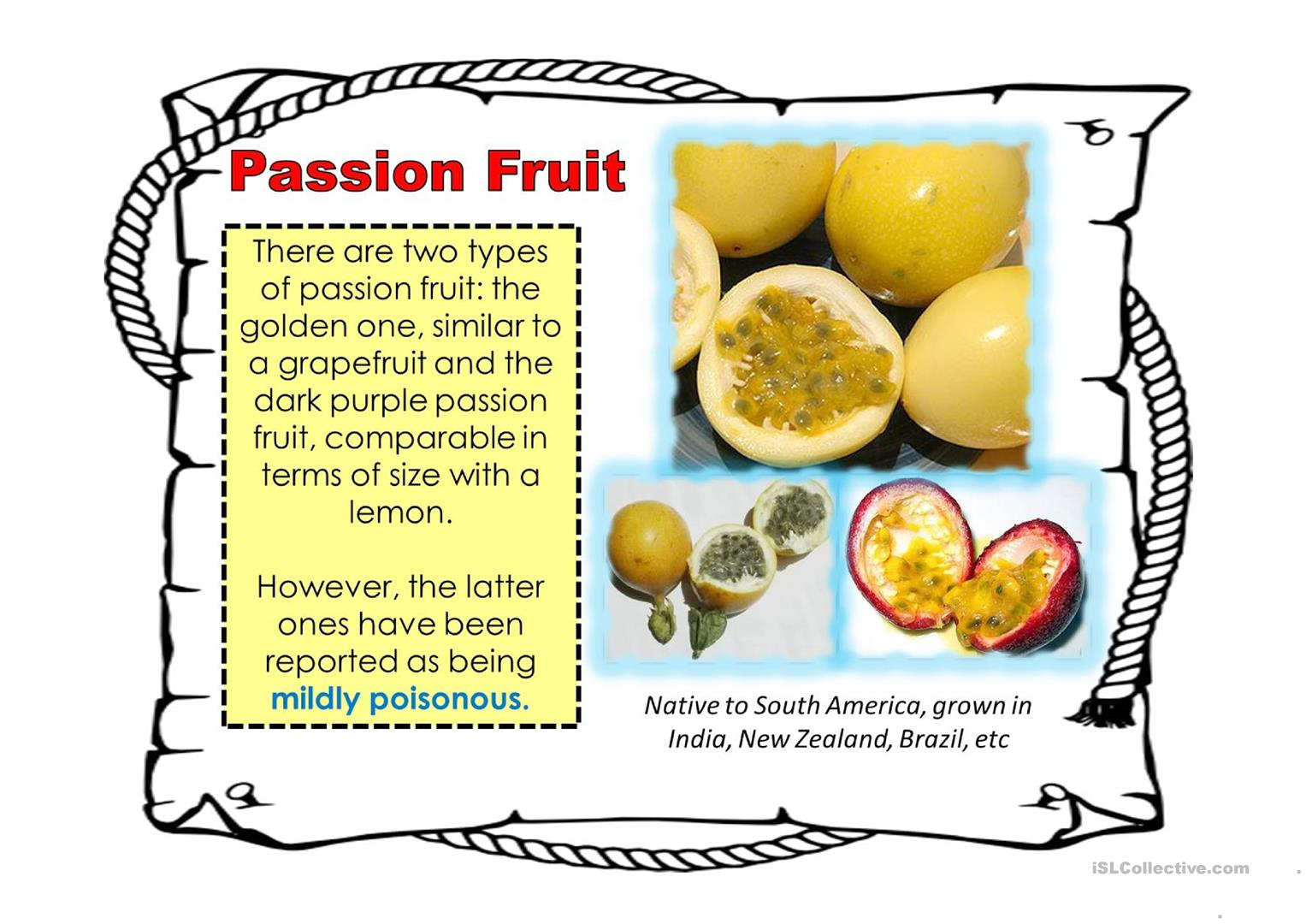 Exotic Fruits Around The World Worksheet