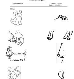 animal´s body parts - English ESL Worksheets for distance learning and  physical classrooms [ 1079 x 763 Pixel ]
