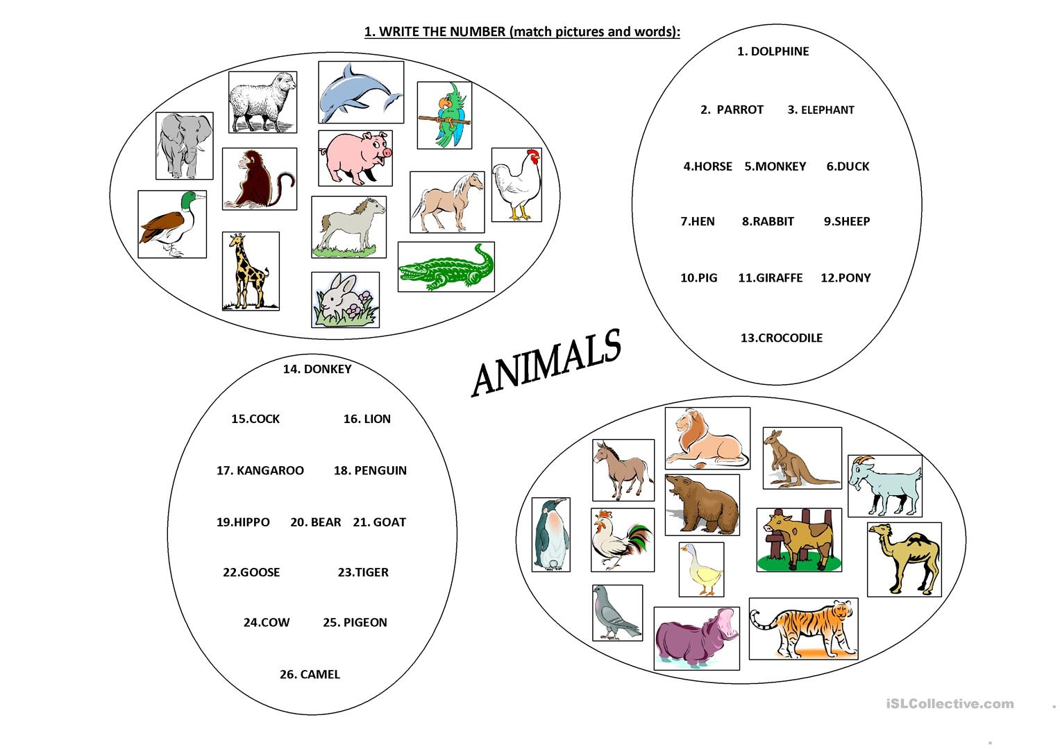 Farm And Zoo Animals Worksheet