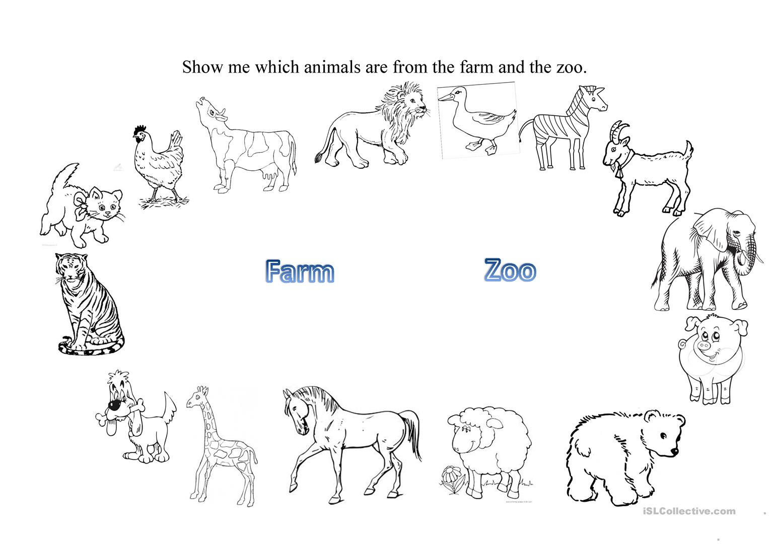 Worksheet About Zoo Animals