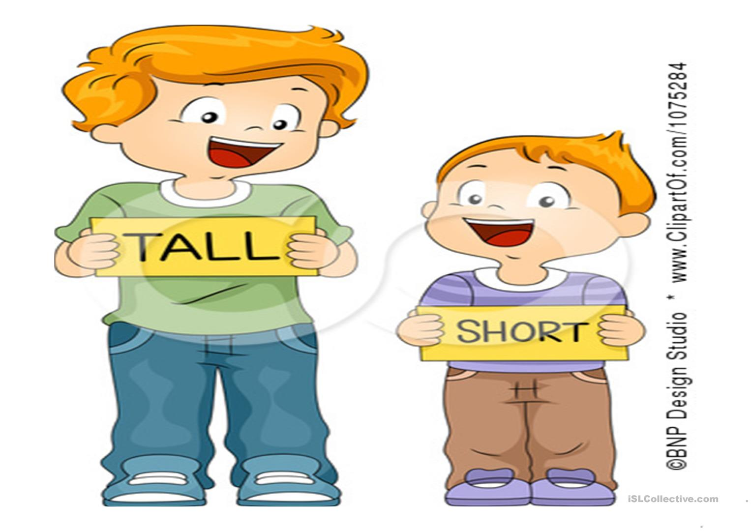 Tall Short Strong Thin Long And Short Worksheet