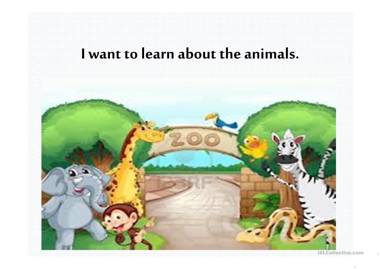 Animals And Their Abilities Can Can T Worksheet