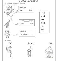 the body and adjectives - English ESL Worksheets for distance learning and  physical classrooms [ 1079 x 763 Pixel ]
