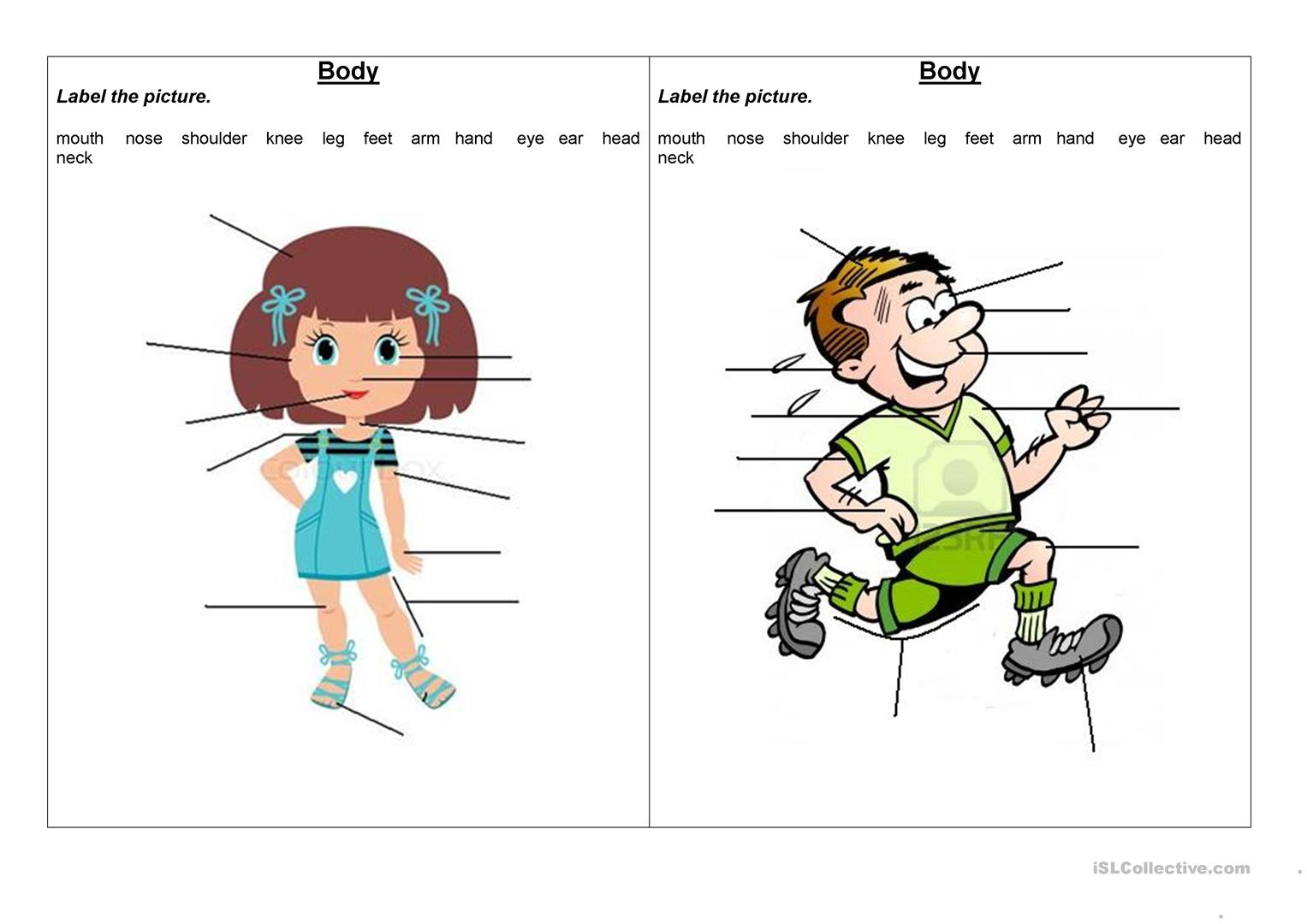 Label The Body Worksheet