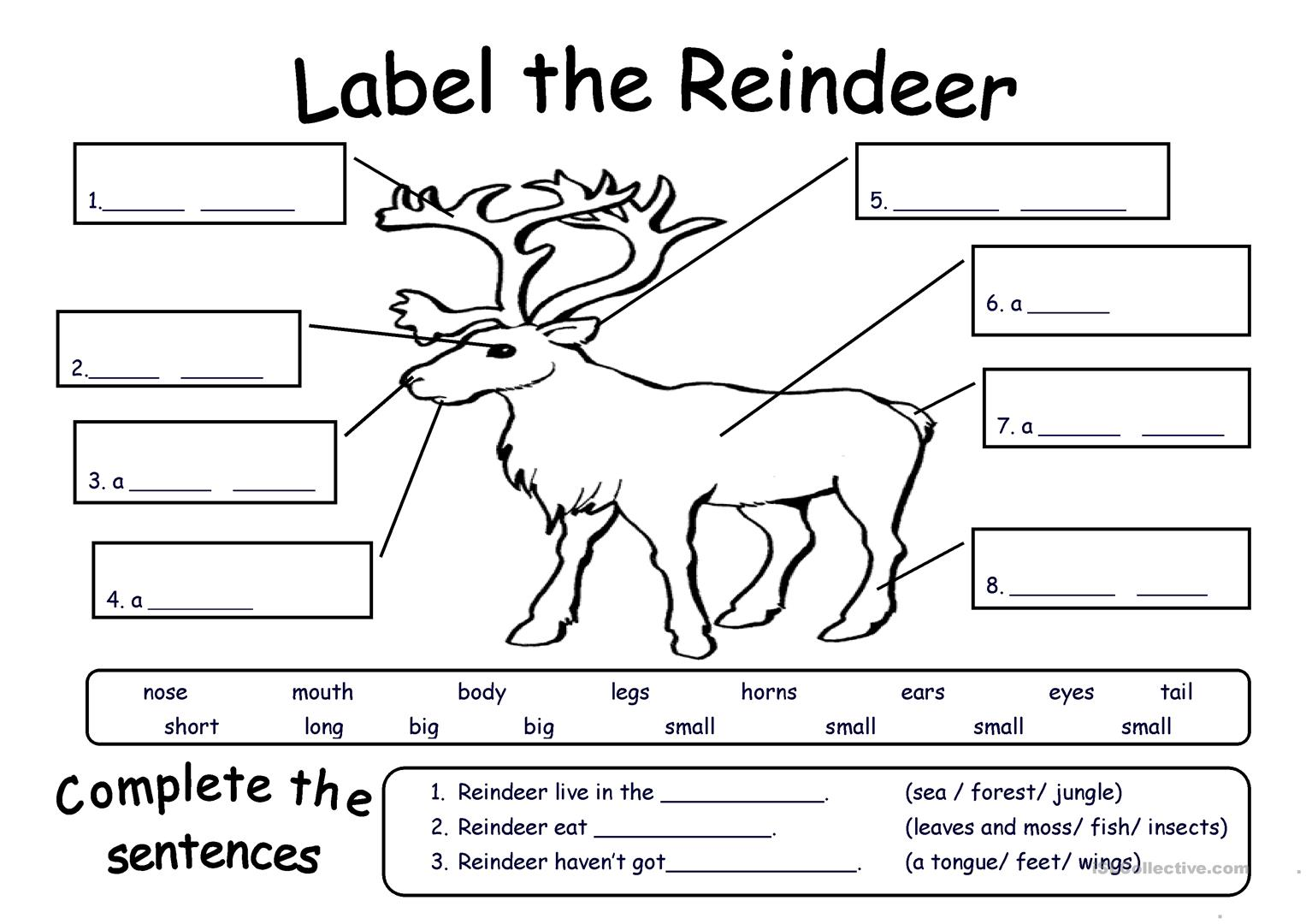Reindeer Bells Worksheet