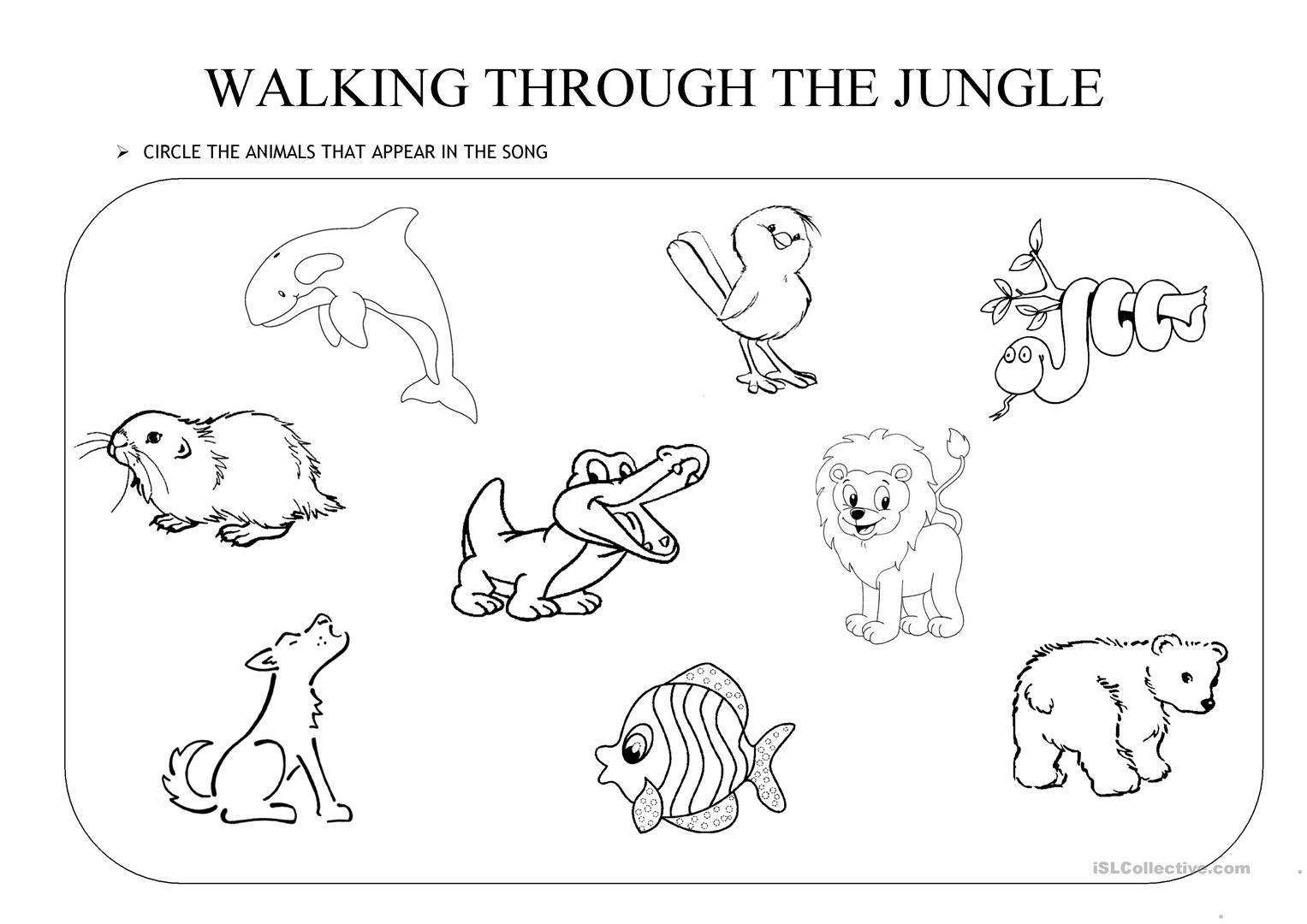 Walking Through The Jungle Worksheet