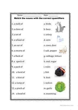 12 FREE ESL Quantifiers (e.g. some, many, much, any, few