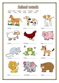 Animal sounds. (key included) worksheet