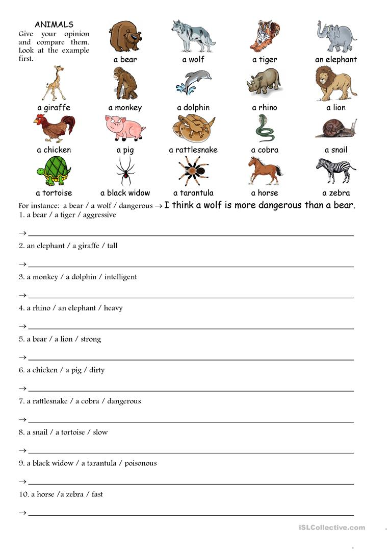 medium resolution of Comparing animals - English ESL Worksheets for distance learning and  physical classrooms