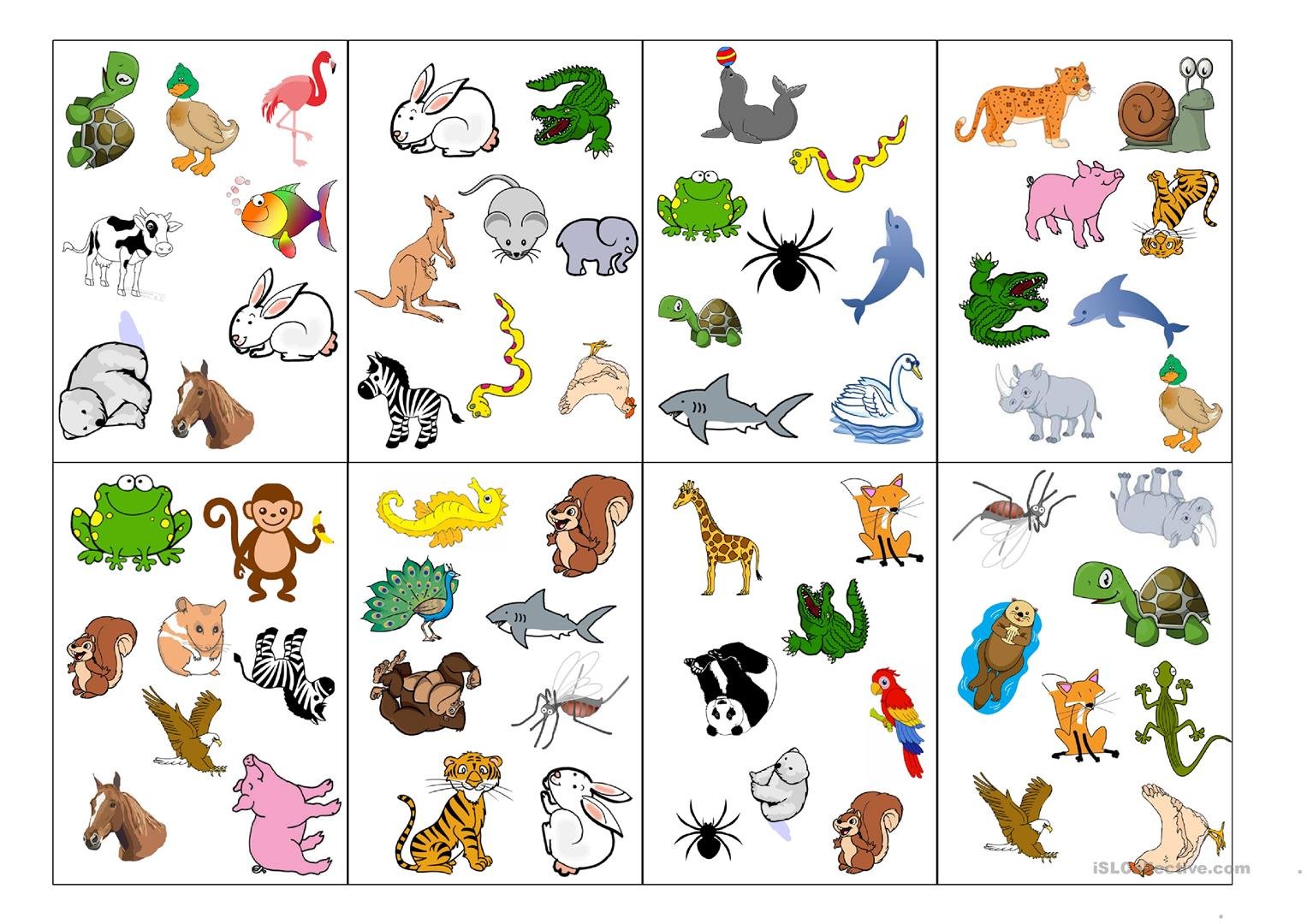 Spot It Card Game Animals