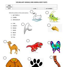 animal vocabulary - English ESL Worksheets for distance learning and  physical classrooms [ 1079 x 763 Pixel ]