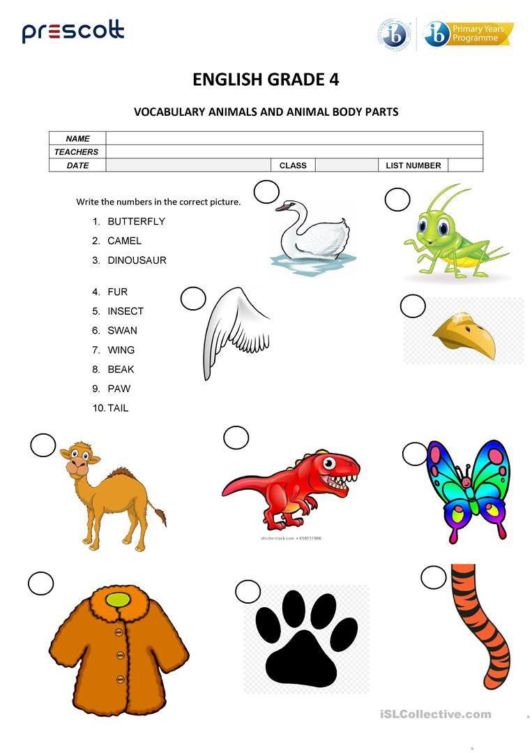 hight resolution of animal vocabulary - English ESL Worksheets for distance learning and  physical classrooms
