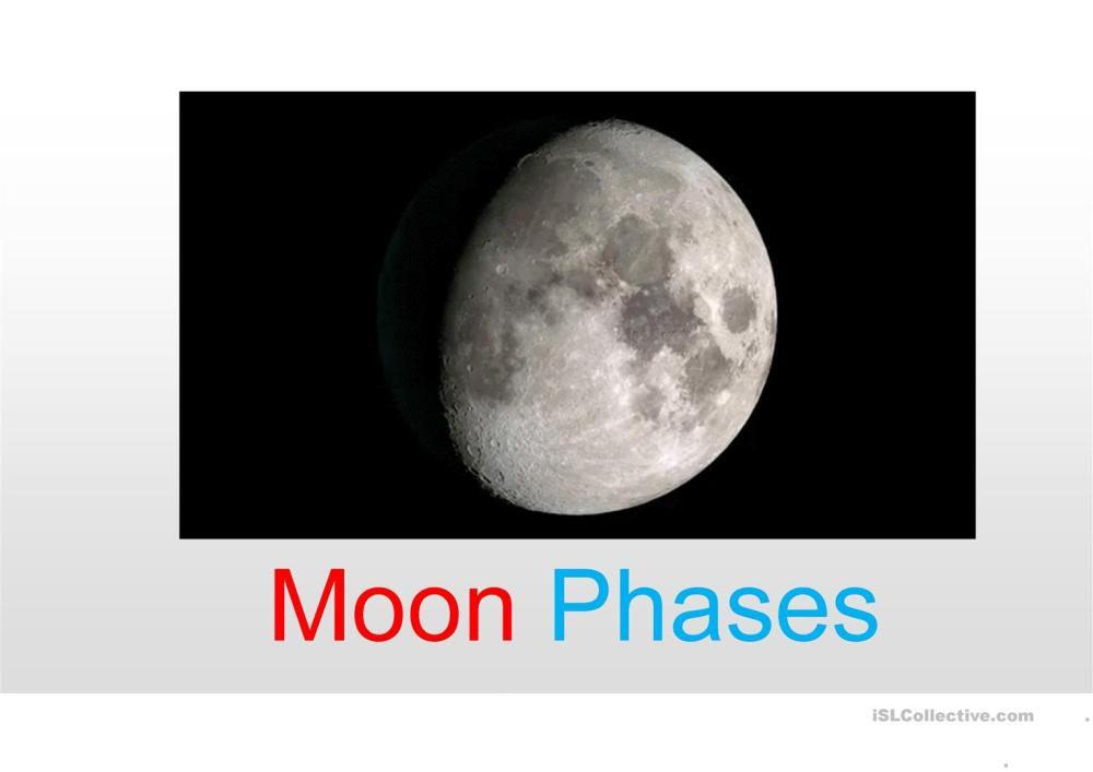 medium resolution of Dog Moon Phases Worksheet   Printable Worksheets and Activities for  Teachers