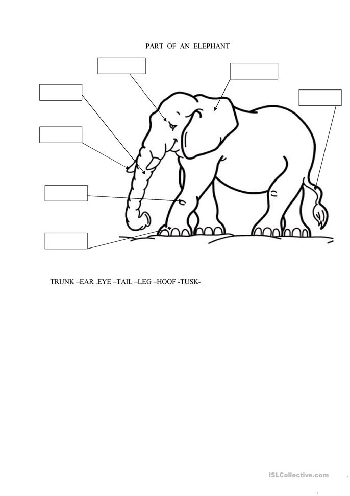 All Worksheets » Elephant And Piggie Worksheets