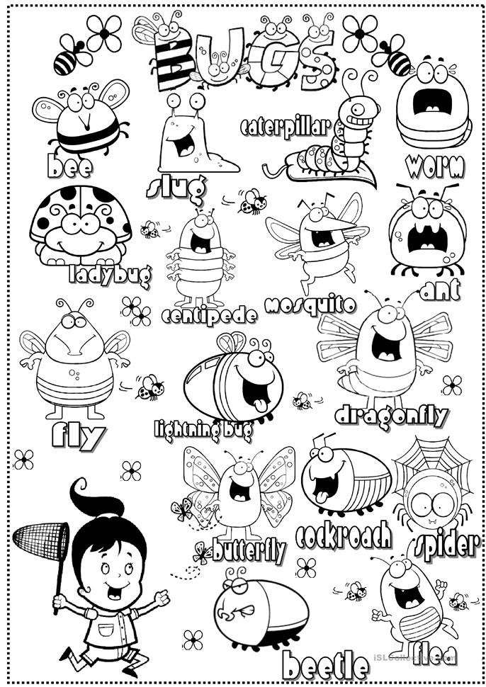 54 FREE ESL insects worksheets