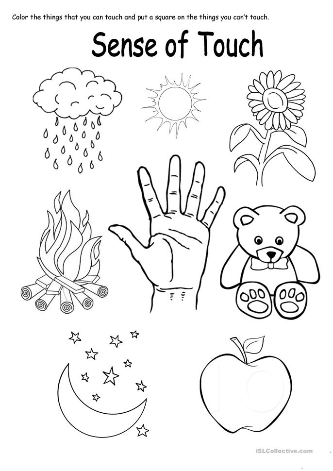five sense worksheet: NEW 482 FIVE SENSES TOUCH WORKSHEET